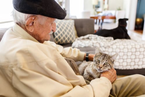 Why Seniors Can (and SHOULD!) Keep Pets at Home